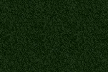 Jodlergrün